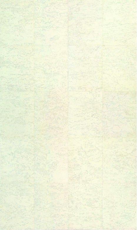 Wicanders Corkcomfort_Color Classics_Slate Arctic_Dekor