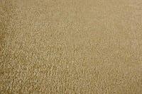 Vorschau: Satino Pissarro 52 ITC - Teppichboden Velours