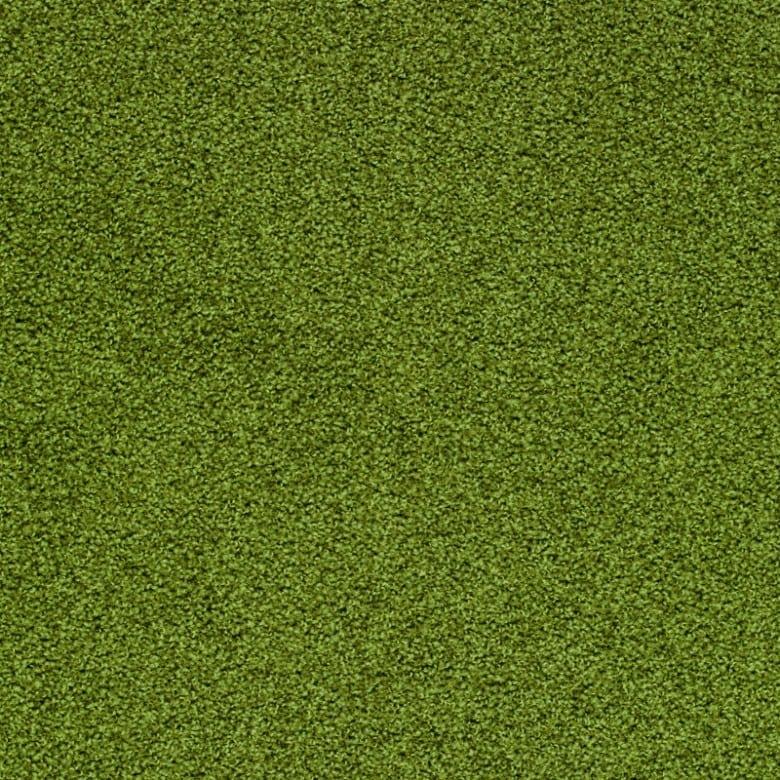 Elara 4E65 - Teppichboden Vorwerk Elara