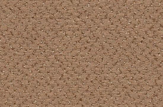 Vorwerk Caruso 8G59 - Teppichboden Vorwerk Caruso