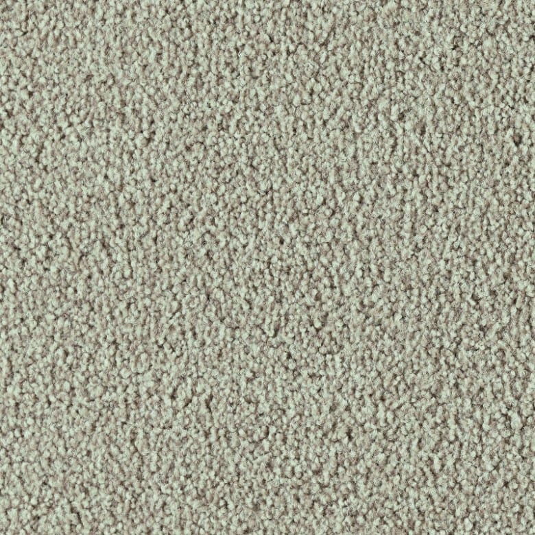 Frisea 815J - Teppichboden Vorwerk Frisea
