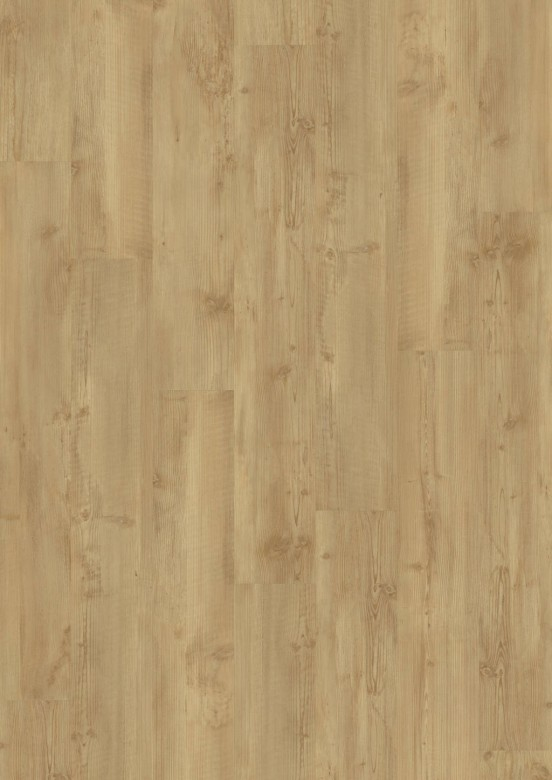 sm_DES_Classic_330_2855_Golden_Pine_V4_mus_1.jpg