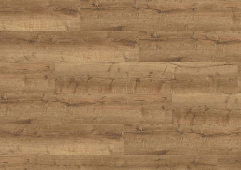 WINEO%20600%20wood%20XL%20DB196W6%20ViennaLoft%20Room%20Up.JPG