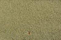 Vorschau: Moto 030 JAB - Teppichboden Shaggy