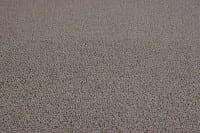 Vorschau: Infloor Clip Fb. 845 - Teppichboden Infloor Clip