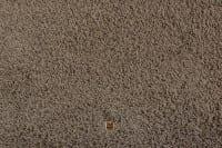 Vorschau: Moto 623 JAB - Teppichboden Shaggy