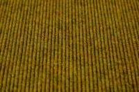 Vorschau: Tretford Ever 560 Curry - Teppichboden Tretford Ever