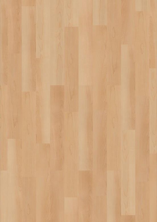 3976031-Maple-Natural.jpg