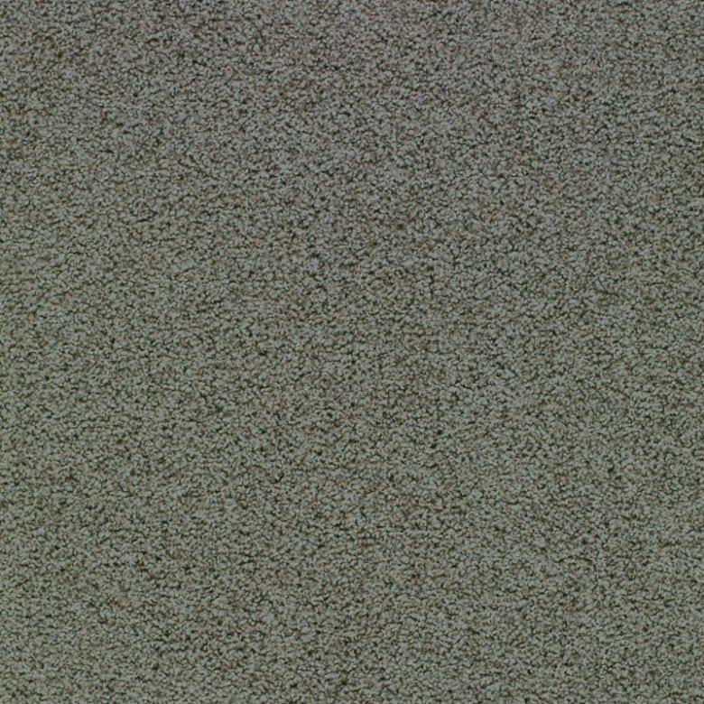 Elara 8G81 - Teppichboden Vorwerk Elara