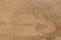 Vorschau: Satino Romeo 35 ITC - Teppichboden Hochflor
