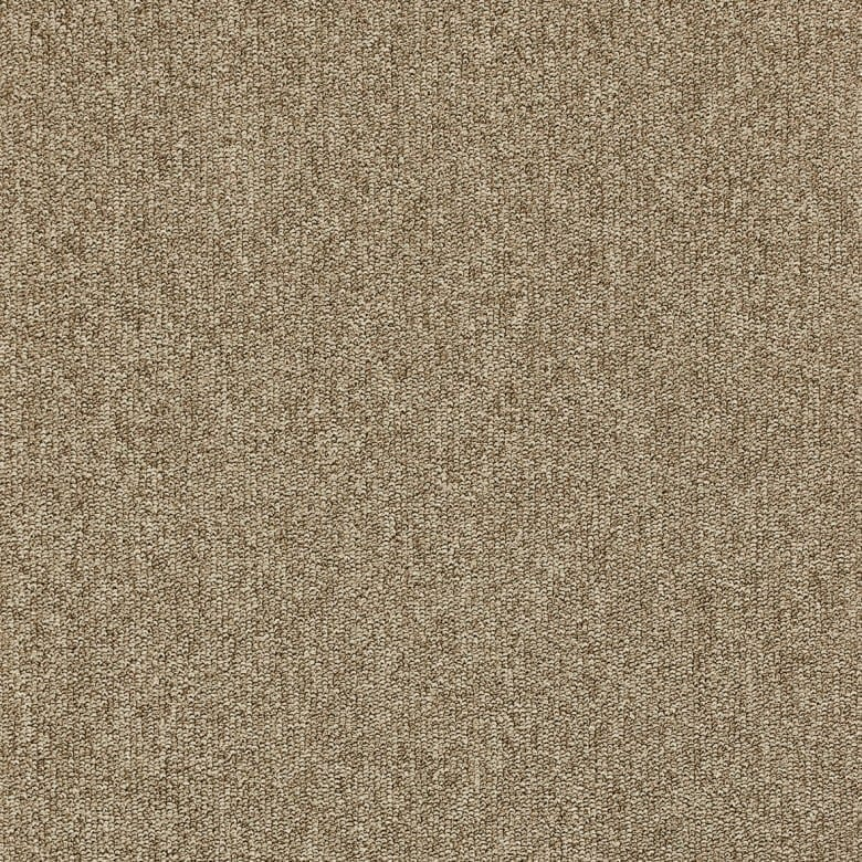 Master 36 ITC - Teppichboden Schlinge