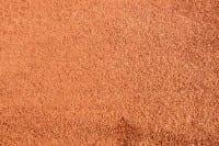 Vorschau: Satino Romeo 54 ITC - Teppichboden Hochflor