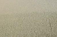 Vorschau: AW Illusion 20 - Teppichboden Associated Weavers Illusion