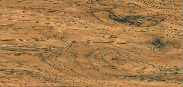 Roteiche Ziro Vinylan Hydro object - Vinylboden Holzoptik zum Klicken