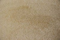 Vorschau: Ideal Silk 011 - Teppichboden Ideal Silk