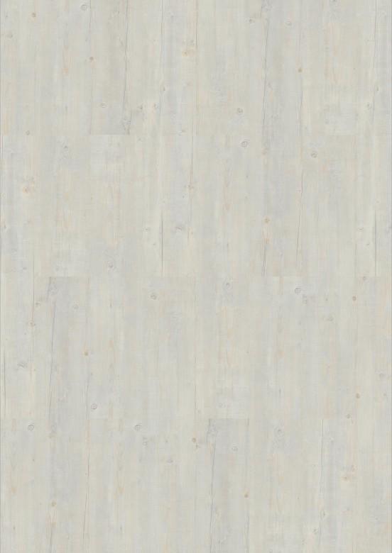 24707007-Washed-Pine-Snow.jpg